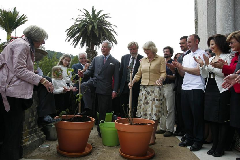 Prince Charles and the Duchess of Cornwall visited British Community voluntary work, such as Sailing for the Disabled and The Friends of Monserrate. They were entertained at the Palácio de Queluz